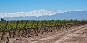 Las Mejores Excursiones en Mendoza
