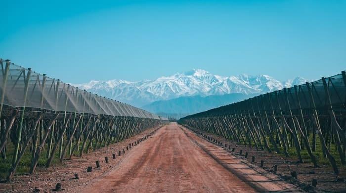 Mejores zonas Dónde alojarse en Mendoza