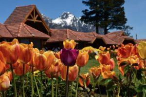 Dónde alojarse en Bariloche